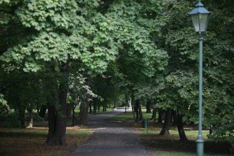 Park Dej